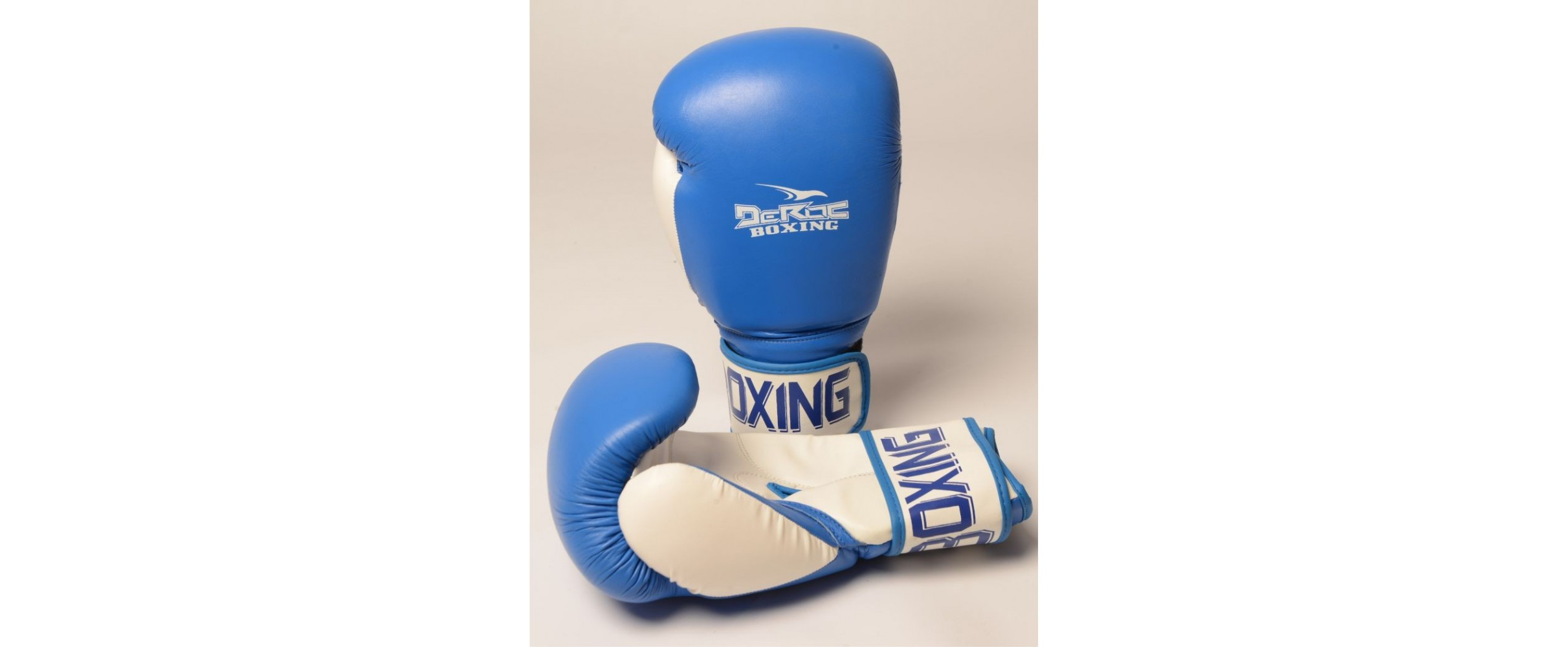Pro-Training Boxing Glove